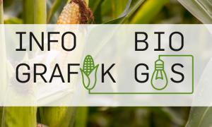 Titelbild Infografik Biogas