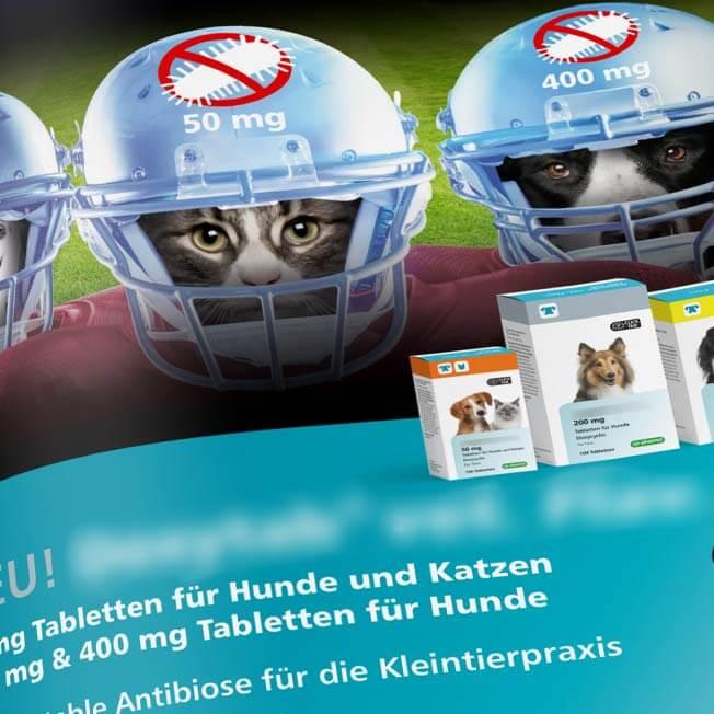 Antibiosemittel für Hunde und Katzen